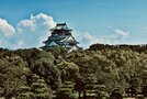 大阪城公園は歴史と自然を感じる憩いの場!見どころやアクセス方法は?