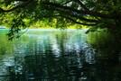 豊かな自然が自慢のむろいけ園地を徹底ガイド!人気のアスレチックをご紹介