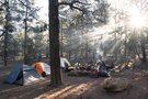 緑の休暇村 青根キャンプ場は相模原の人気キャンプ場!アクセスは?