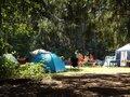 橘ふれあい公園キャンプ場で大自然を満喫!ローラーすべり台が人気の施設をご紹介