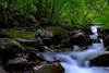 彩の国キャンプ村はバンガローと岩風呂が人気!気になる設備やアクセスは?