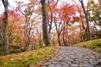 箱根美術館の見どころ・料金を徹底調査!おすすめの人気施設も
