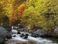 松川渓谷は長野が誇る温泉と紅葉の名所!アクセスや見どころを徹底調査