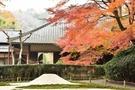 あじさいの名所・明月院は紅葉も美しい!見どころや周辺のカフェをご紹介