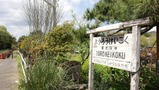 千葉・養老渓谷はハイキングが人気の観光スポット!アクセスやおすすめコースは?