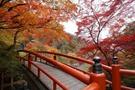 河鹿橋は伊香保温泉湯元にある紅葉の名所!見頃やアクセスは?