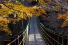 花貫渓谷は紅葉狩りが楽しめる人気スポット!おすすめのランチや遊び方は?