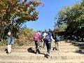 高尾山へ行くときの気温毎の服装まとめ!季節に応じたコーデも