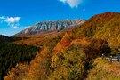 「鳥取県江府町」美しい大山のブナ林や木谷沢の清流、食事に癒される!