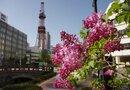 北海道の一度は行きたい旅館ランキングTOP5!人気の高級宿も♡