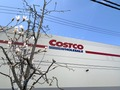 コストコのオーガニックケールが評判!おすすめの食べ方や保存方法は?