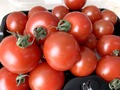 【トマト】のカロリー・糖質を徹底解説!ダイエット中におすすめの食べ方も