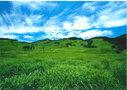 【砥峰高原】は夏の新緑も美しい人気の名所!おすすめスポットを大公開